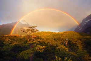 750x500xDouble-Rainbow,,-Dwarf-Forest,,-Laguna-Torre.jpg.pagespeed.ic.SqwPGgvnX1