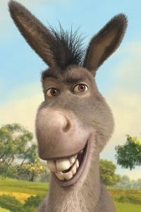 donkey-shrek-640x9601